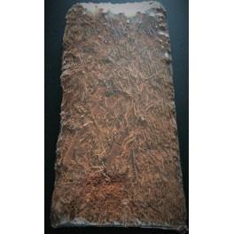 plaque de xaxim 50x20